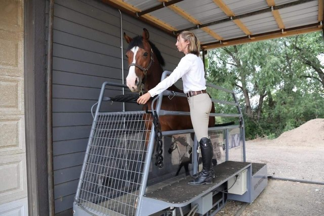 Woman standing by horse on the treadmill